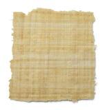 Papiro Fotografia Stock