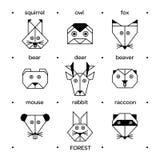 Papiroflexia 3 del bosque de los animales Fotografía de archivo