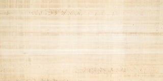 papirus Obraz Royalty Free