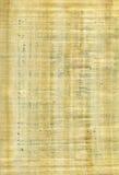 Papirus Photographie stock libre de droits