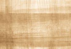 papirus Fotografia Stock