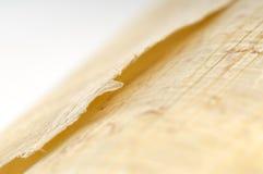 papirus Zdjęcie Royalty Free