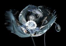 A papoila com irradia o estame que ilumina a flor ilustração do vetor