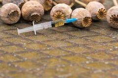 Papoila de ópio da droga dentro da seringa Toxicodependência mortal Fotos de Stock