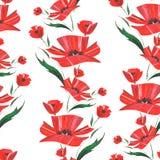 A papoila estilizado floresce a ilustração Foto de Stock Royalty Free
