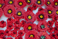 Papoila vermelha Símbolo da vitória Imagem de Stock Royalty Free