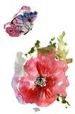 Papoilas vermelhas e uma borboleta Fotos de Stock Royalty Free