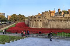 Papoilas vermelhas perto da torre de Londres Imagem de Stock Royalty Free