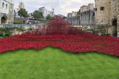 Papoilas vermelhas perto da torre de Londres Fotografia de Stock