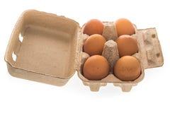 Pappäggask med sex isolerade bruna ägg Arkivfoton