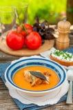 Pappa al pomodoro, pomidor i chleb polewka, zdjęcie stock