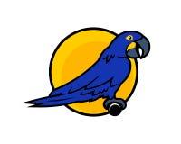 Pappagallo del personaggio dei cartoni animati del pappagallo sulla pertica illustrazione di stock