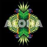 Pappagallo di slogan aloha, fondo nero delle piante Immagini Stock