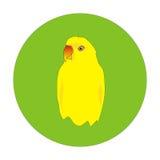 Pappagallo giallo Immagine Stock Libera da Diritti