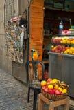Pappagallo su una via stretta di Gerusalemme Fotografie Stock