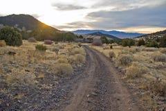 Pappel Canyon Road lizenzfreie stockbilder