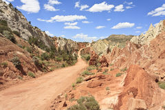 Pappel Canyon Road Stockfoto