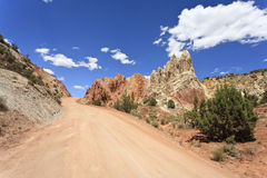Pappel Canyon Road Stockfotografie