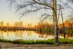 Pappel, Pappel und Birken nahe dem Teich bei Sonnenuntergang Lizenzfreie Stockfotos