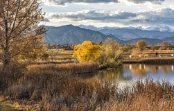 Pappeln auf Stearns See im Herbst lizenzfreie stockbilder