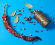 Papper et moulin d'un rouge ardent photos stock