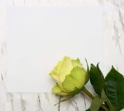 papper för den blanka leafen steg Arkivbild