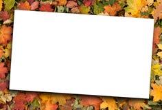 papper för leaves för höst blankt fallet liggande Royaltyfria Bilder