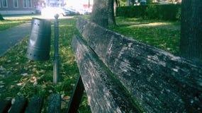 Papper kan och bänken in parkera Royaltyfri Bild