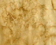 Papper med kaffefläckar Arkivbild