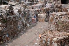 Papper och trämassa mal - Waste papper Royaltyfri Foto