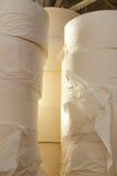 papper rullar toaletten Royaltyfri Fotografi