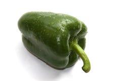Papper verde bagnato del segnalatore acustico Immagini Stock