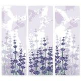 Pappers- affärskort för lavendel med färgpulverfläckar stock illustrationer