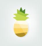 Pappers- ananas Royaltyfri Foto