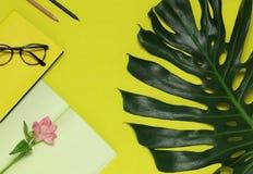 Pappers- anmärkningar, blomma, grönt blad på den gula bakgrunden royaltyfri bild