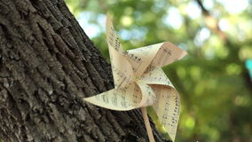 Pappers- blomma, pappers- garneringar, stilleben arkivfilmer