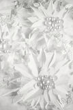 Pappers- blommor Royaltyfria Bilder