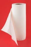 Pappers- handdukar Royaltyfri Foto