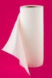 Pappers- handdukar Royaltyfria Foton