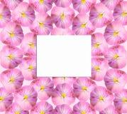 Pappers- kort på en blom- bakgrund fotografering för bildbyråer