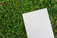 Pappers- kort som förläggas på grön bladmodell Royaltyfri Foto
