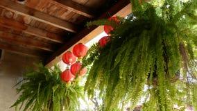 Pappers- lyktor på sjaskig byggnad Röda pappers- lyktor som hänger på tak av riden ut konkret tempelbyggnad på soligt lager videofilmer
