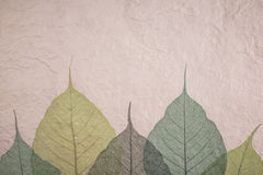 Pappers- naturbakgrundskonst Arkivfoto