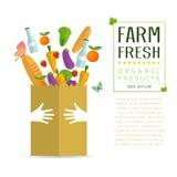 Pappers- packe med ny sund jordbruksprodukter Royaltyfri Bild