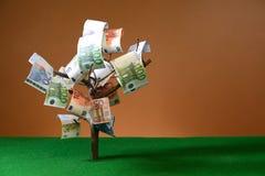 Pappers- sedlar för euro som hänger på ett träd Royaltyfri Foto