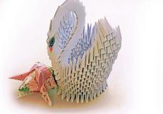 Pappers- tulpanflowe för svan Arkivbild