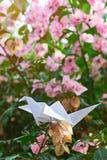 Pappers- vit kran Fotografering för Bildbyråer