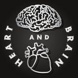 Papperssnitt av hjärnan och hjärta Arkivbild