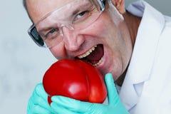 Paprica脱氧核糖核酸 免版税库存照片