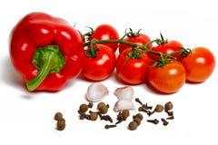 Paprica, aglio, chiodi di garofano e pomodori Fotografia Stock
